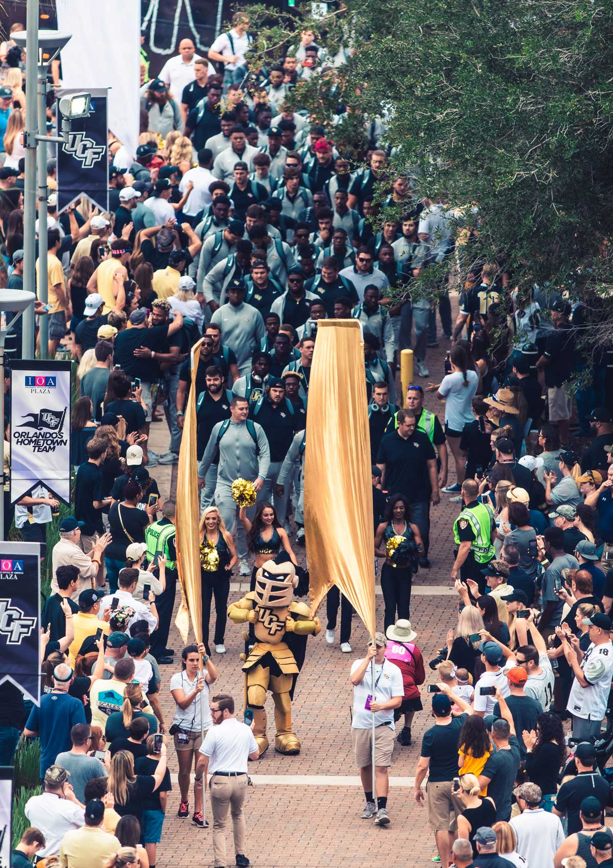 UCF mascot Knightro walks on a brick sidewalk with gold banners on either side of him and the team behind him as cheering fans line the path