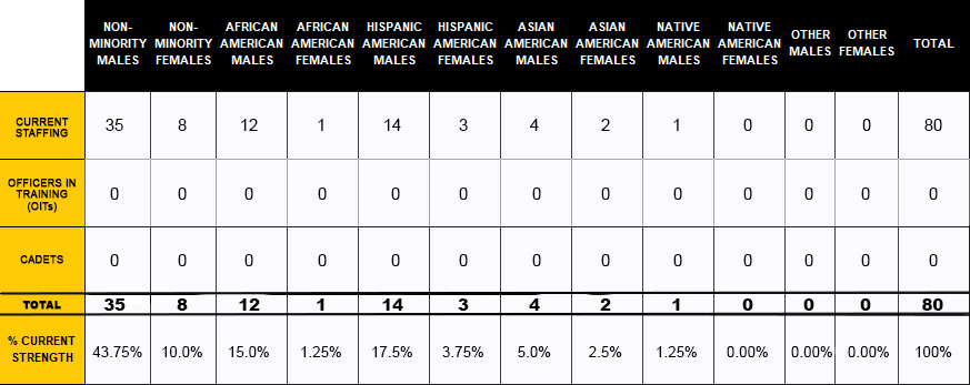 Table of UCF Police Department genders and races.