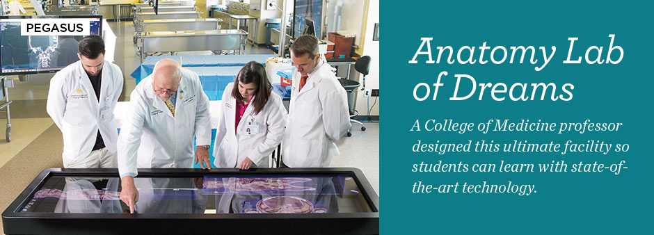 Pegasus Summer 2015: Anatomy Lab of Dreams