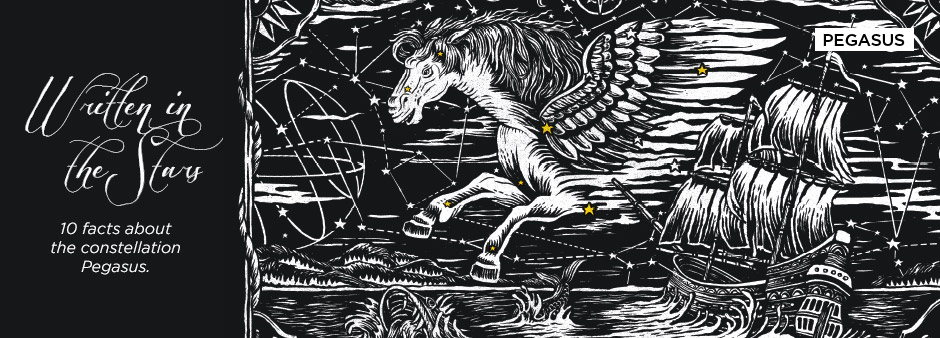 Written in the Stars: 10 facts about the constellation Pegasus.